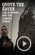Artist Spotlight Documentary Vignette filmed at the Culture Crawl 2016